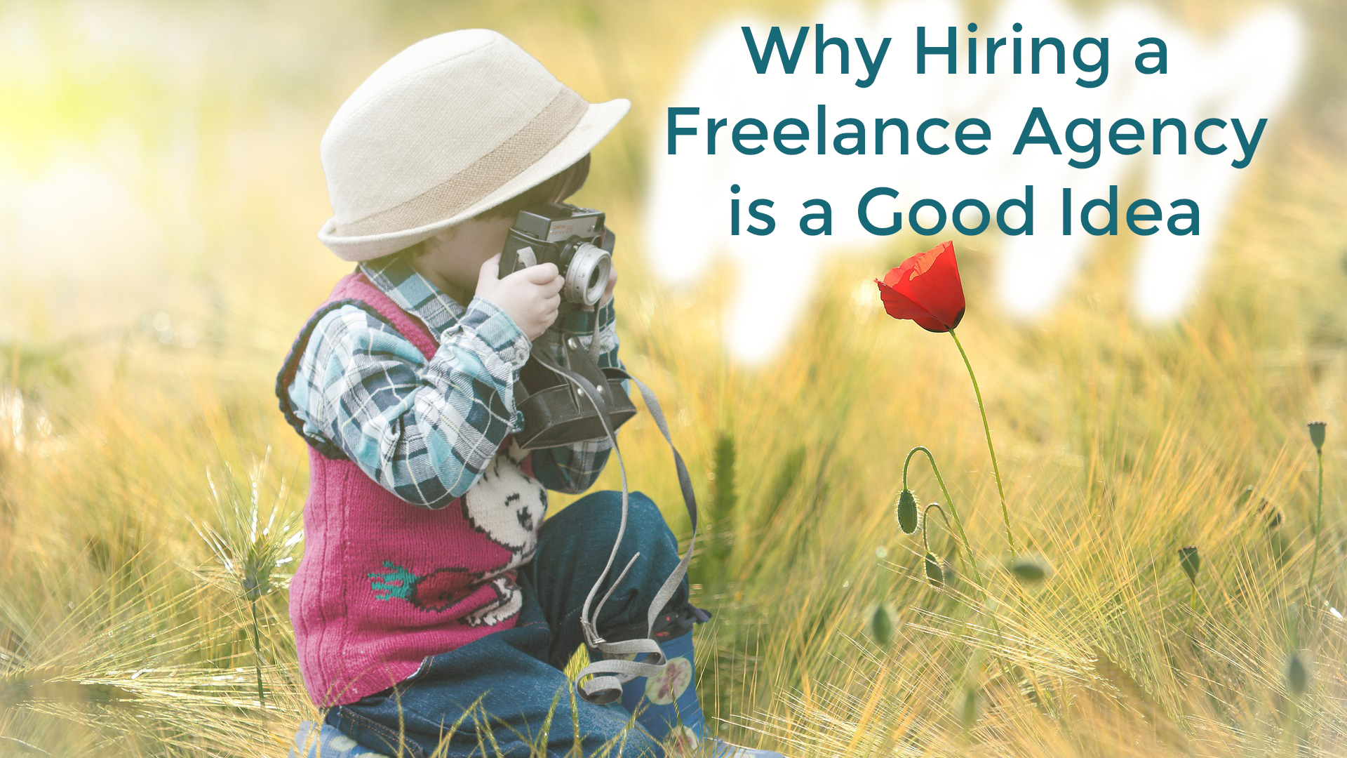 Read more about the article Scared of Hiring a Freelance Agency? This Why it's Worth it