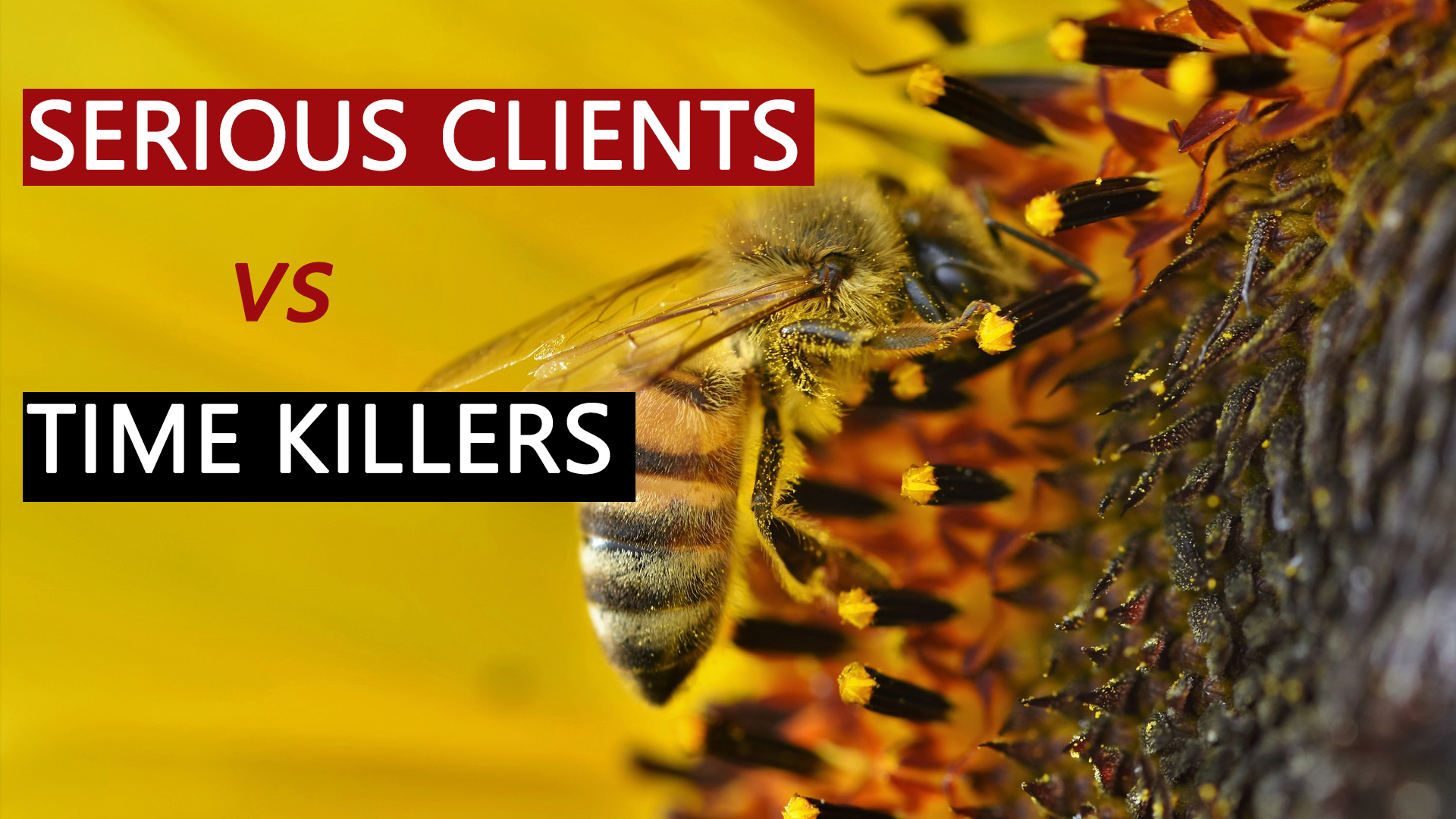 How to Differentiate Between Serious Clients and 'Time Killers'